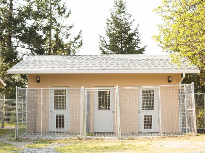 Waggin On Inn Mountain Pet Resort Grants Pass Oregon